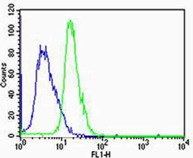 HTR1A Rabbit anti-Human, Polyclonal, Invitrogen 400 µL; Unconjugated