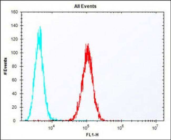 ERAS Rabbit anti-Mouse, Polyclonal, Invitrogen 400 µL; Unconjugated