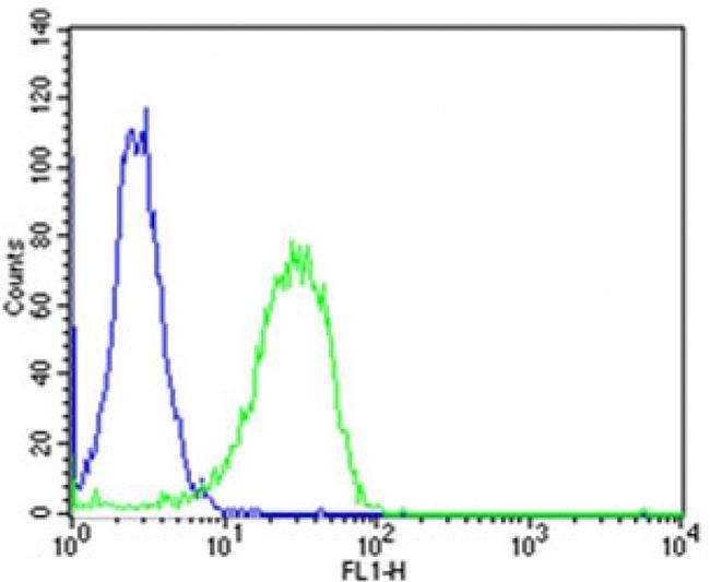 MTTP Rabbit anti-Human, Polyclonal, Invitrogen 400 µL; Unconjugated