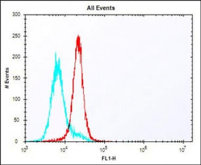 HLA-DQA1 Rabbit anti-Human, Mouse, Polyclonal, Invitrogen 400 µL;