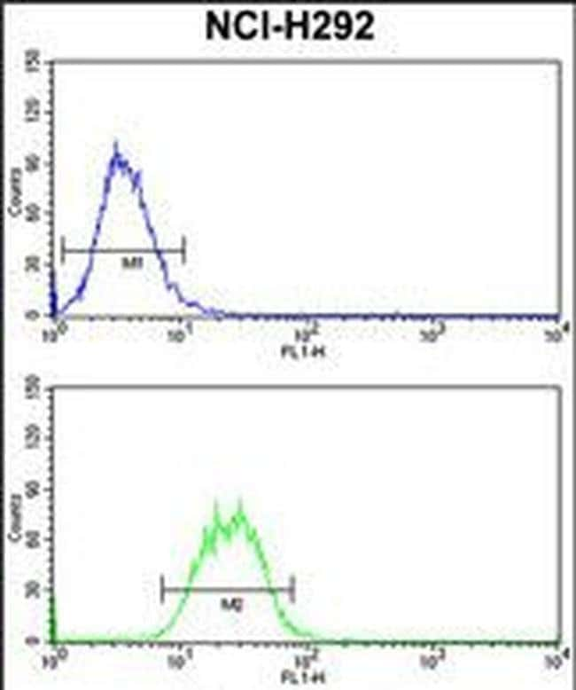 SNRPD2 Rabbit anti-Human, Polyclonal, Invitrogen 400 µL; Unconjugated