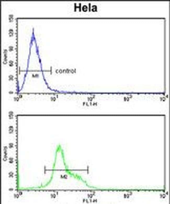 DTX4 Rabbit anti-Human, Polyclonal, Invitrogen 400 µL; Unconjugated