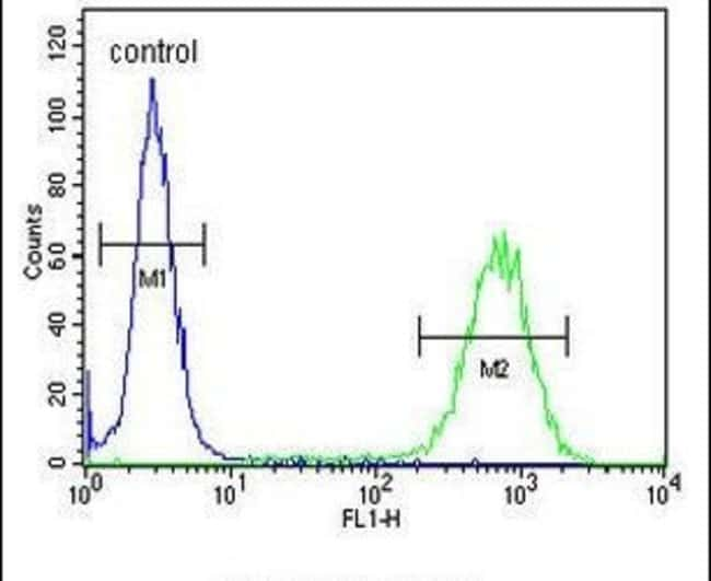 PCDH17 Rabbit anti-Human, Polyclonal, Invitrogen 400 µL; Unconjugated