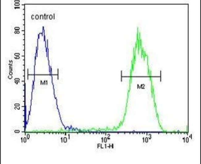 PCDHGC3 Rabbit anti-Human, Polyclonal, Invitrogen 400 µL; Unconjugated