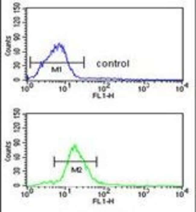 PEX11A Rabbit anti-Human, Polyclonal, Invitrogen 400 µL; Unconjugated