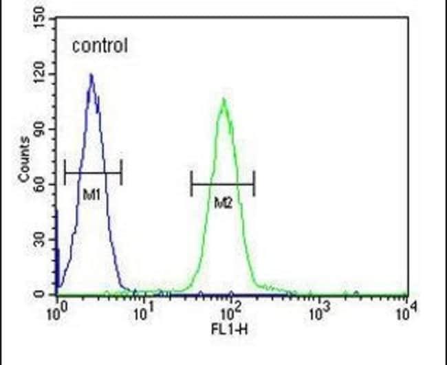 PGAP2 Rabbit anti-Human, Polyclonal, Invitrogen 400 µL; Unconjugated