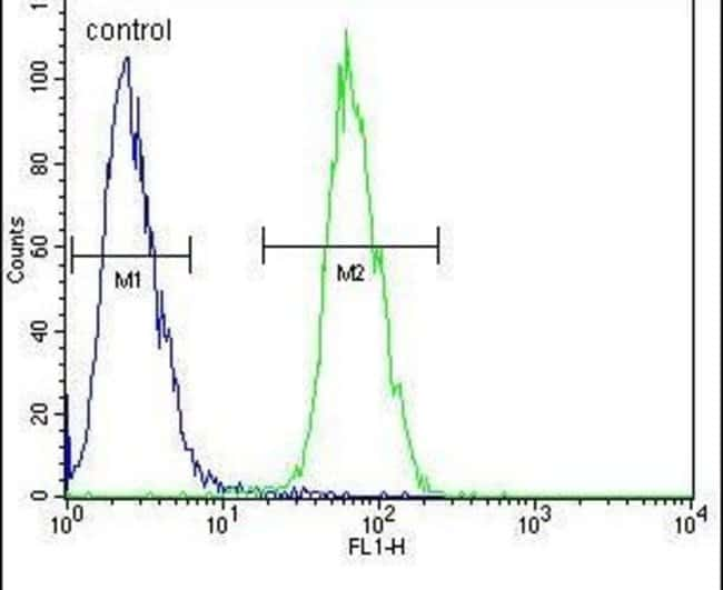 PLA2 Rabbit anti-Human, Mouse, Polyclonal, Invitrogen 400 µL; Unconjugated