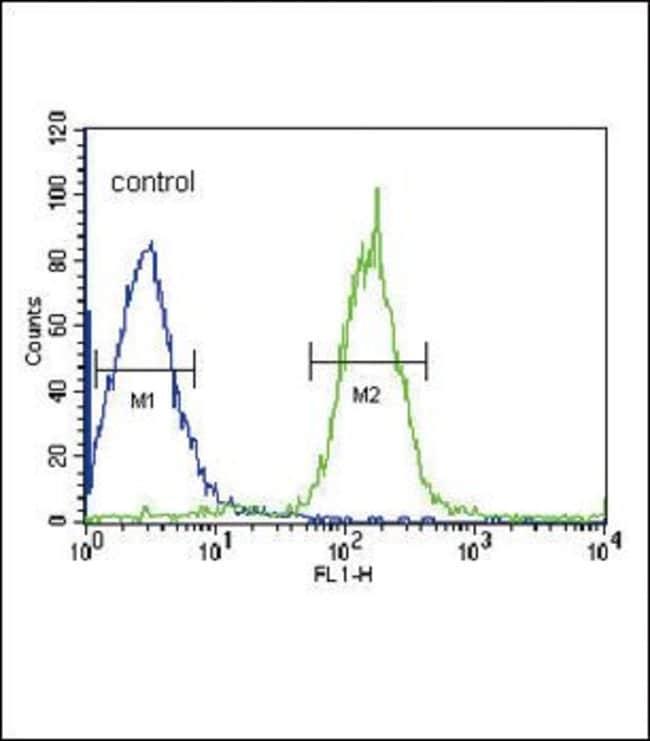 PLA2G6 Rabbit anti-Human, Polyclonal, Invitrogen 400 µL; Unconjugated