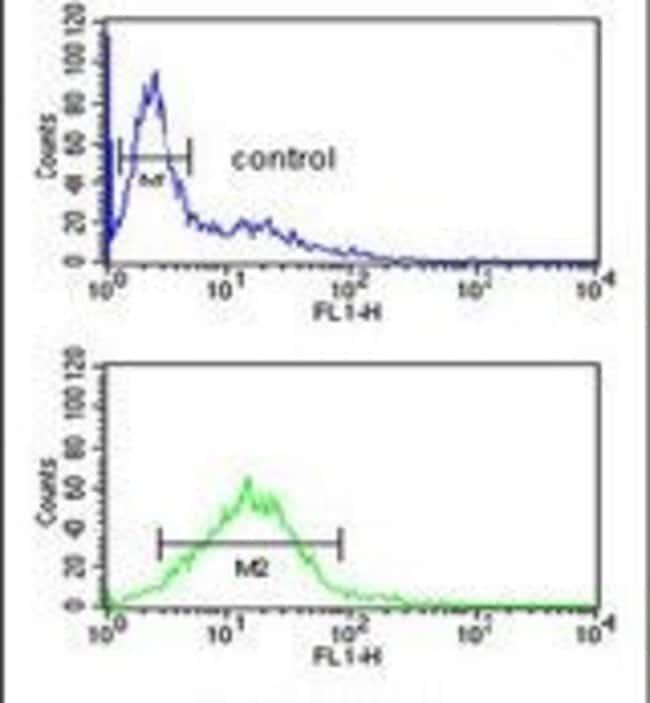 Phospholamban Rabbit anti-Human, Mouse, Polyclonal, Invitrogen 400 µL;