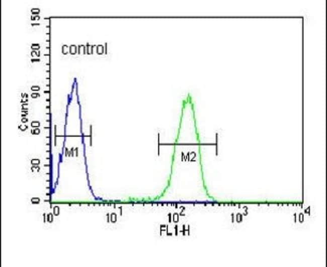 PLVAP Rabbit anti-Human, Polyclonal, Invitrogen 400 µL; Unconjugated