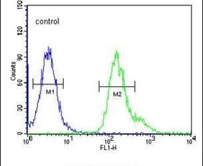 PMPCB Rabbit anti-Human, Mouse, Polyclonal, Invitrogen 400 µL; Unconjugated