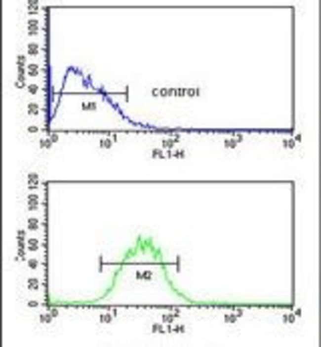 PR38A Rabbit anti-Human, Polyclonal, Invitrogen 400 µL; Unconjugated