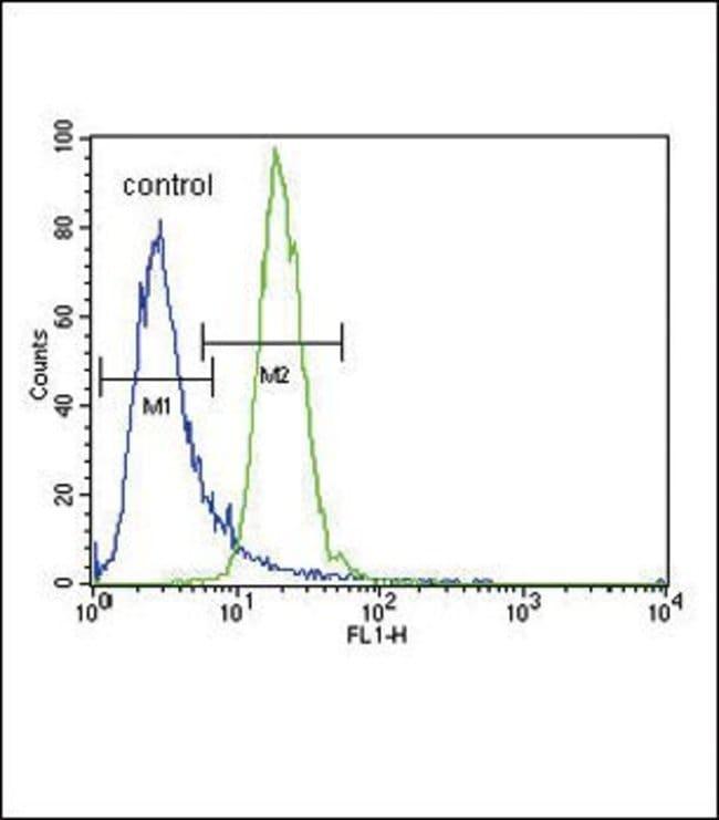 AMPK alpha-2 Rabbit anti-Human, Polyclonal, Invitrogen 400 µL; Unconjugated