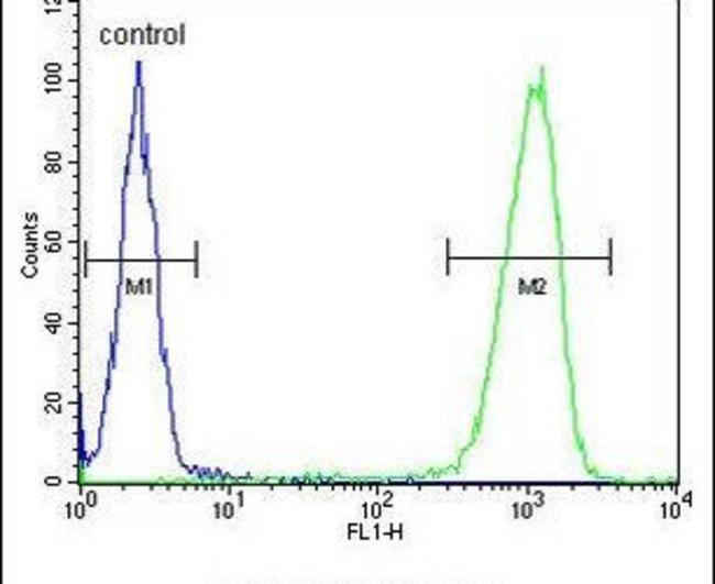 PEX2 Rabbit anti-Human, Mouse, Polyclonal, Invitrogen 400 µL; Unconjugated