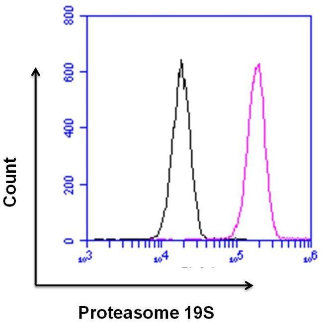 PSMD3 Rabbit anti-Human, Mouse, Polyclonal, Invitrogen 100 µg; Unconjugated