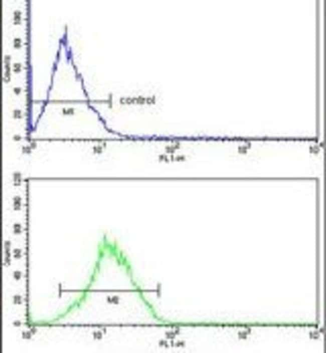 RBM3 Rabbit anti-Human, Mouse, Polyclonal, Invitrogen 400 µL; Unconjugated