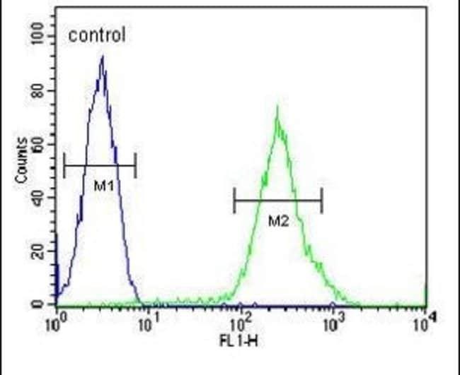 RCL Rabbit anti-Human, Polyclonal, Invitrogen 400 µL; Unconjugated