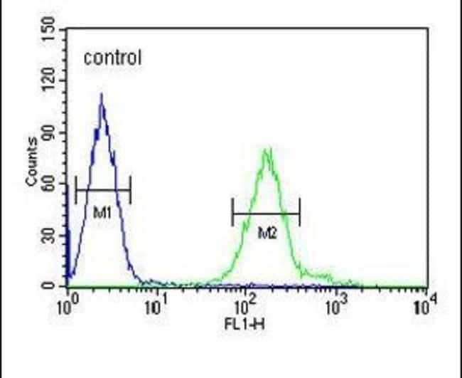 RDH16 Rabbit anti-Human, Polyclonal, Invitrogen 400 µL; Unconjugated