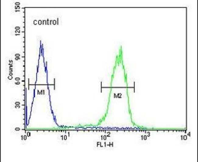 RNF185 Rabbit anti-Hamster, Human, Mouse, Polyclonal, Invitrogen 400 µL;