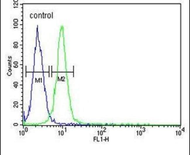 RPL18A Rabbit anti-Human, Mouse, Polyclonal, Invitrogen 400 µL; Unconjugated