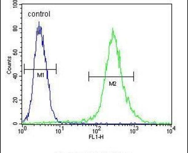 RPS24 Rabbit anti-Human, Polyclonal, Invitrogen 400 µL; Unconjugated