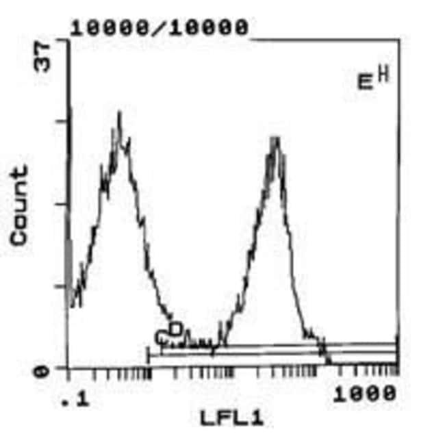 Great Mouse Anti Rat IgG (Kappa Light Chain), Clone: OX 12, Secondary Antibody,  Invitrogen™ 250μg; Unconjugated Primary Antibodies Ia To IgF