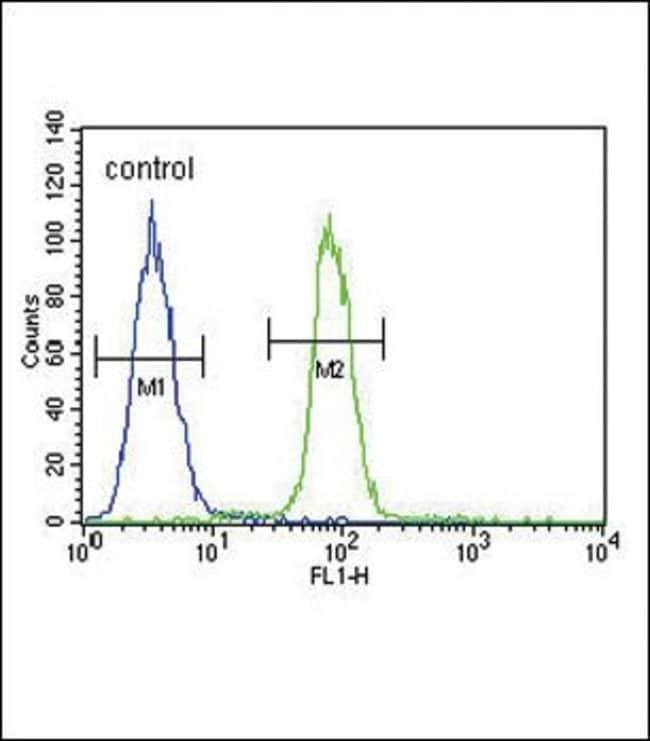 S100B Rabbit anti-Human, Mouse, Polyclonal, Invitrogen 400 µL; Unconjugated