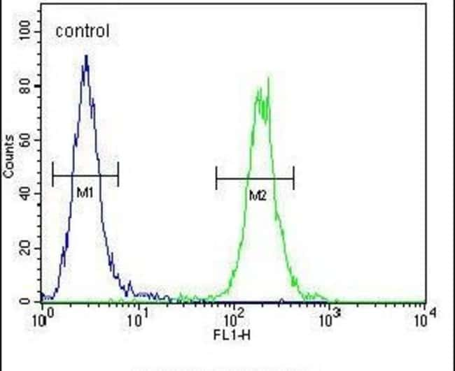 SCARF2 Rabbit anti-Human, Mouse, Polyclonal, Invitrogen 400 µL; Unconjugated