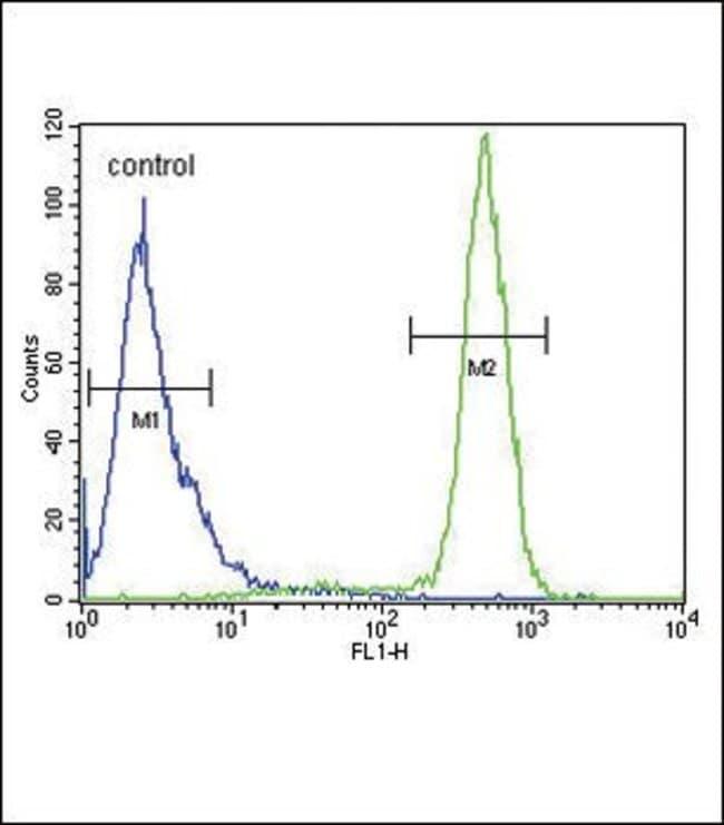 SCN1B Rabbit anti-Human, Mouse, Polyclonal, Invitrogen 400 µL; Unconjugated