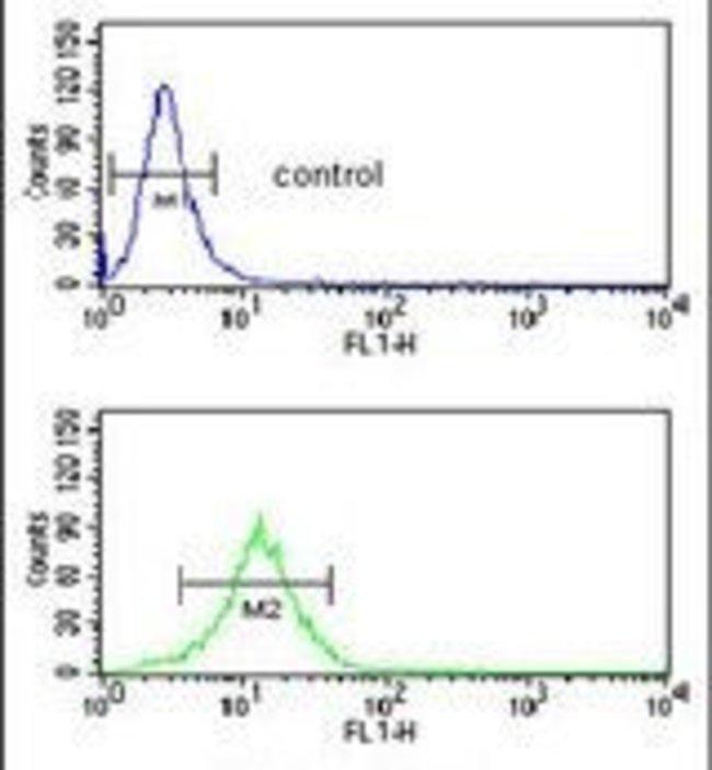 SDPR Rabbit anti-Hamster, Human, Polyclonal, Invitrogen 400 µL; Unconjugated