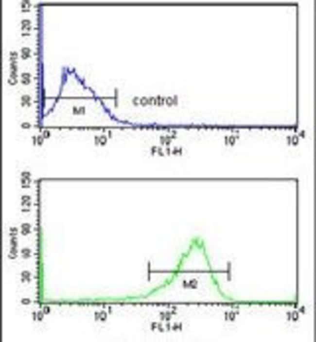 SELT Rabbit anti-Human, Polyclonal, Invitrogen 400 µL; Unconjugated