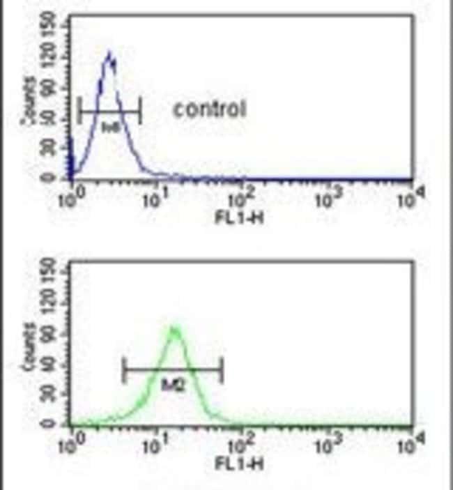 SERPINA4 Rabbit anti-Human, Polyclonal, Invitrogen 400 µL; Unconjugated