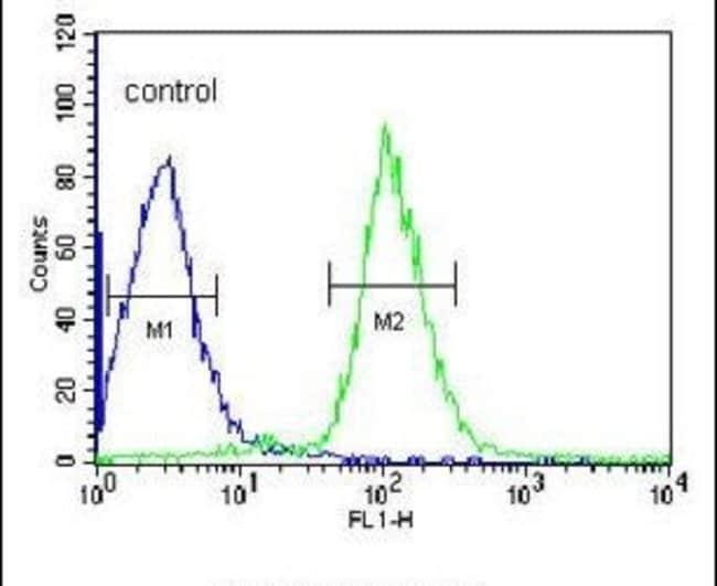SERPINC1 Rabbit anti-Human, Mouse, Polyclonal, Invitrogen™ 400 μL; Unconjugated Primary Antibodies Sa to Sg
