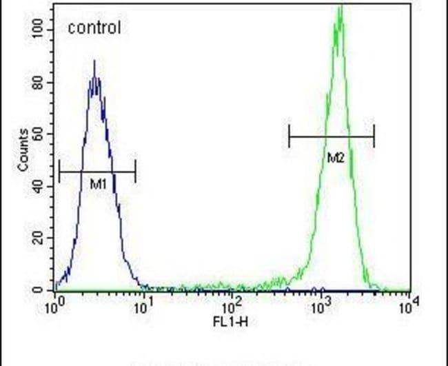 SGMS2 Rabbit anti-Human, Polyclonal, Invitrogen 400 µL; Unconjugated