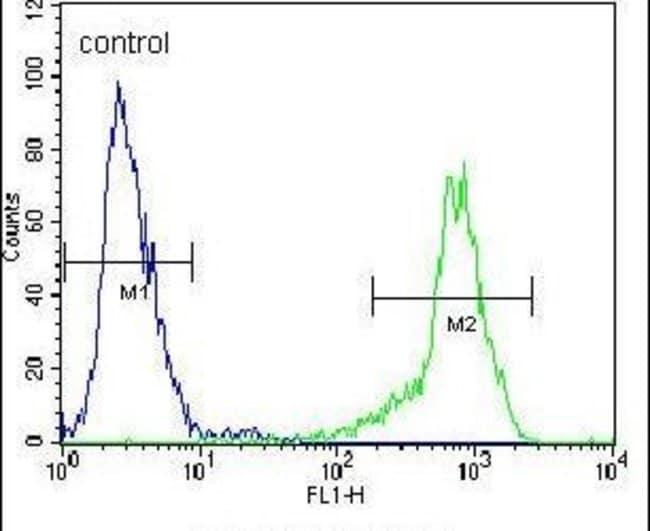 SIAH2 Rabbit anti-Human, Polyclonal, Invitrogen 400 µL; Unconjugated