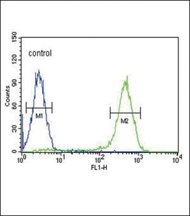 NTCP Rabbit anti-Human, Polyclonal, Invitrogen 200µL; Unconjugated