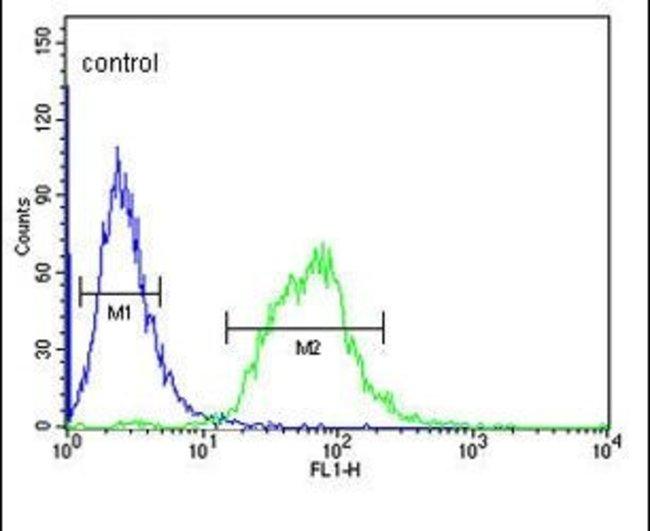 SLC22A6 Rabbit anti-Human, Polyclonal, Invitrogen 400 µL; Unconjugated