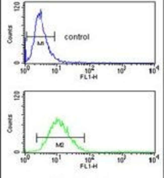 SLC25A17 Rabbit anti-Human, Mouse, Polyclonal, Invitrogen™ 400 μL; Unconjugated Primary Antibodies Sh to Sm