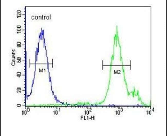 SLC9A9 Rabbit anti-Human, Mouse, Polyclonal, Invitrogen 400 µL; Unconjugated