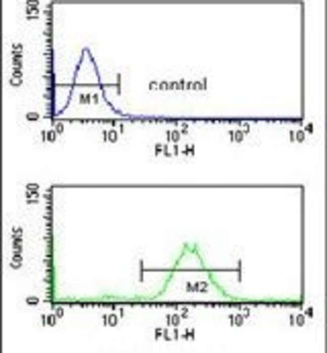 SMNDC1 Rabbit anti-Human, Mouse, Polyclonal, Invitrogen 400 µL; Unconjugated