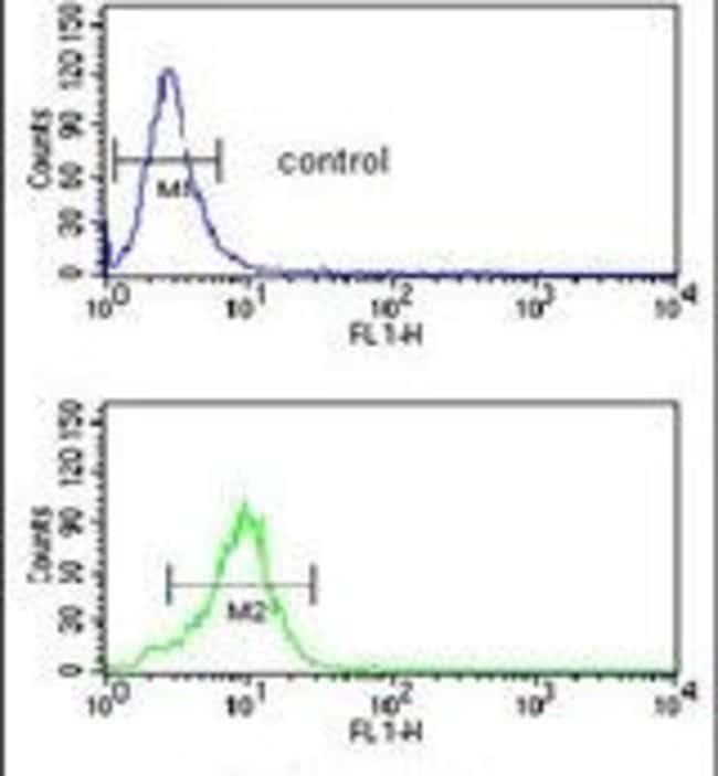 SMPD2 Rabbit anti-Human, Mouse, Polyclonal, Invitrogen 400 µL; Unconjugated