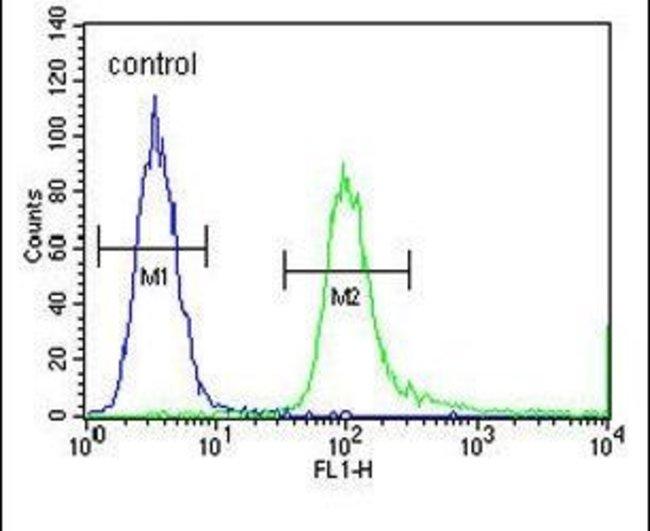 SPDYE3 Rabbit anti-Human, Polyclonal, Invitrogen 400 µL; Unconjugated