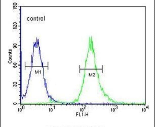 Syntaxin 1 Rabbit anti-Human, Polyclonal, Invitrogen 400 µL; Unconjugated