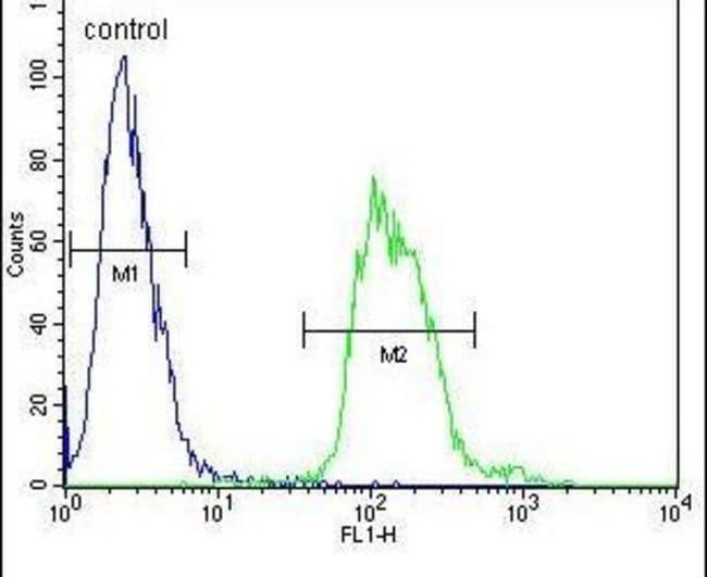 TAC1 C-terminal Peptide Rabbit anti-Human, Polyclonal, Invitrogen 400 µL;