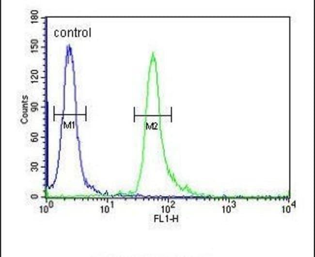 TAGAP Rabbit anti-Human, Polyclonal, Invitrogen 400 µL; Unconjugated