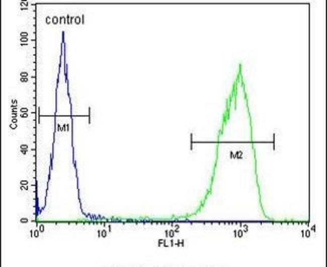 TANK Rabbit anti-Human, Polyclonal, Invitrogen 400 µL; Unconjugated