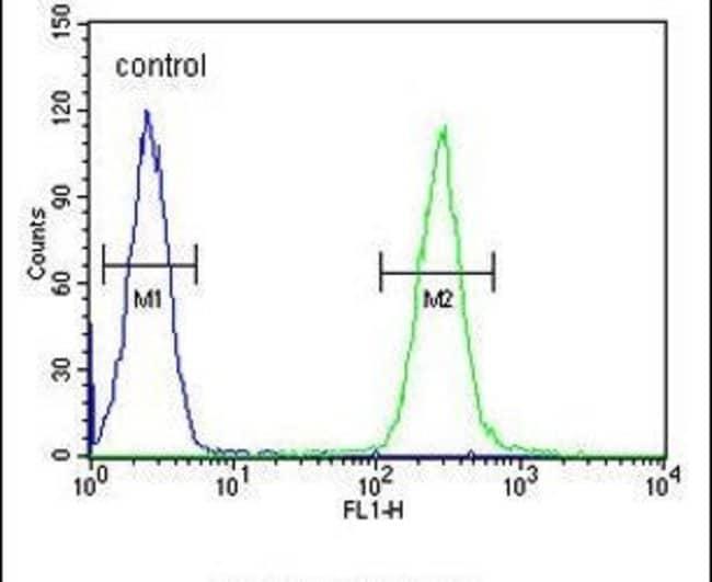 TCL6 Rabbit anti-Human, Polyclonal, Invitrogen 400 µL; Unconjugated