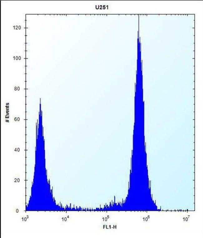 TLR4 Rabbit anti-Human, Polyclonal, Invitrogen 400 µL; Unconjugated
