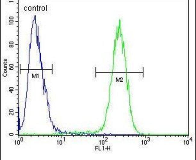 TMEM66 Rabbit anti-Human, Mouse, Polyclonal, Invitrogen 400 µL; Unconjugated