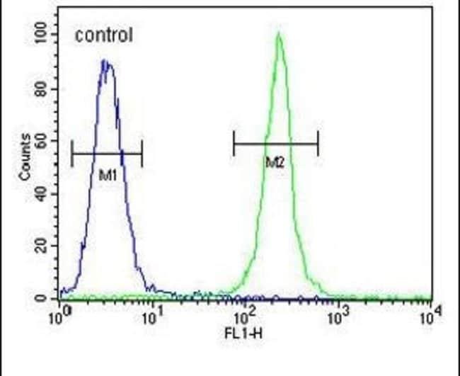 TRHDE Rabbit anti-Human, Polyclonal, Invitrogen 400 µL; Unconjugated
